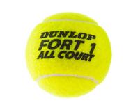 Dunlop FORT ALL COURT TS 2x4 Tennisball